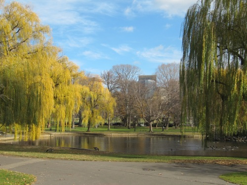boston common1