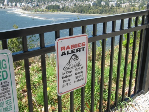 stanley prospect point rabies