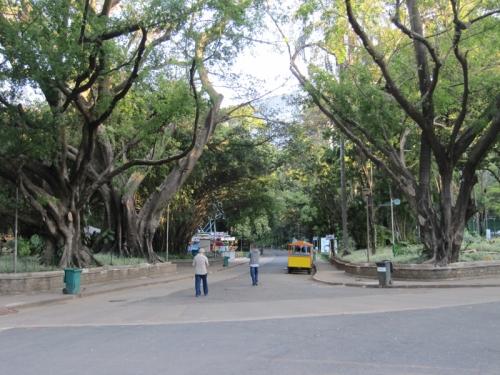 municipalpark1
