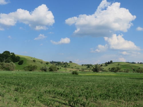 countryside3